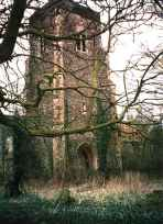 Wild England encroaches - Mickfield tower 2003.