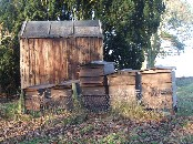 horse box and bee hives