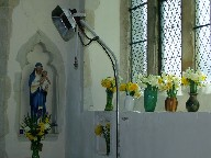 BVM, daffs and triffid