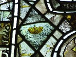 east window glass: butterfly